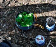 чай из смородины, туристическая компания Мир приключений Хабаровск, активные туры Хабаровский край, экспедиции по Дальнему Востоку, пешие походы, сплавы, рыбалка на тайменя, восхождения, квадроциклы