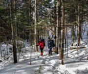 прогулка на снегоступах, снегоступинг, зимний отдых, маршрут выходного дня, активный отдых в Хабаровске, бэккантри, Большой Хехцир