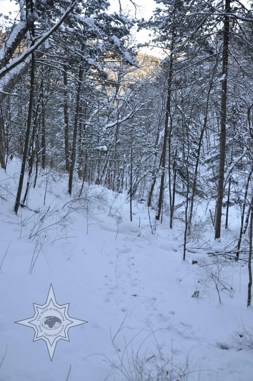 Поход на снегоступах