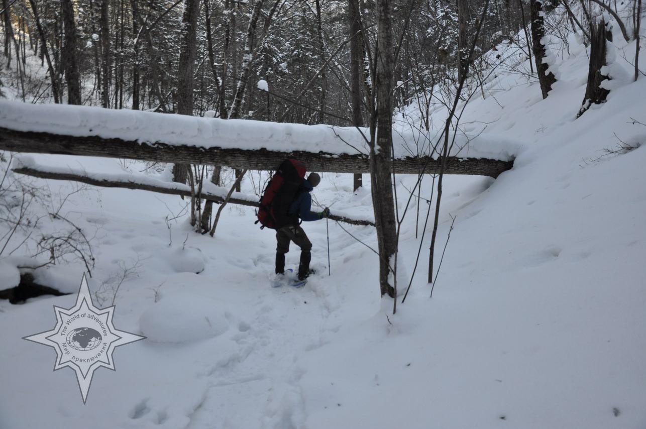 Спуск на снегоступах