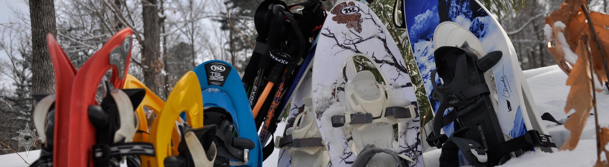 Школа снегоступинга