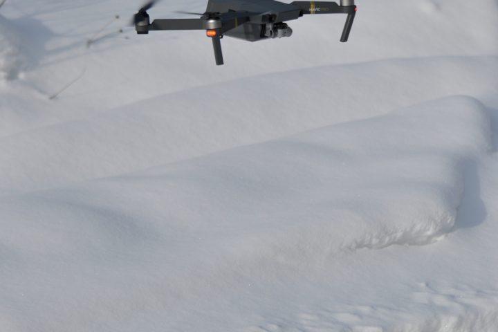 Квадрокоптер над следом тигра