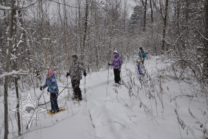 Семейная прогулка на снегоступах