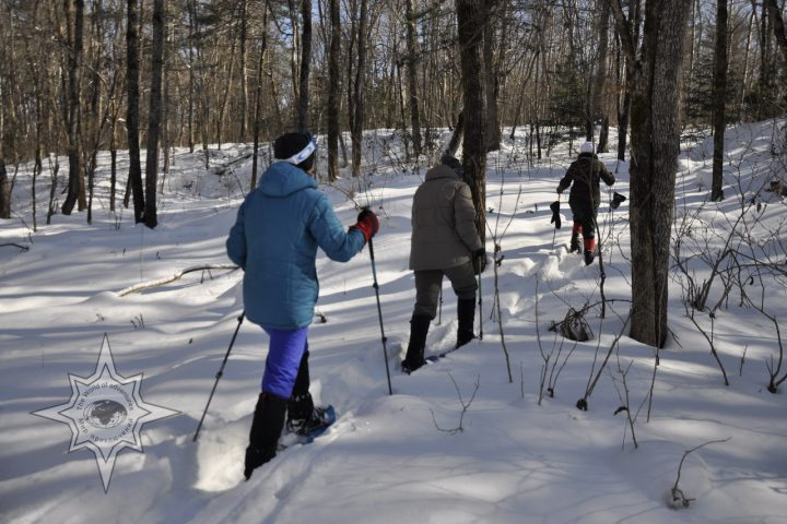 Прогулки на снегоступах Мир приключений