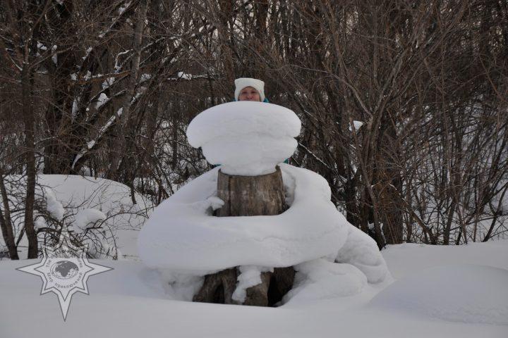 Вот такой зимний вид!